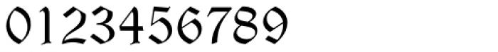Wittenberger Fraktur Std Regular Font OTHER CHARS