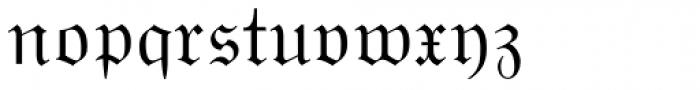 Wittenberger Fraktur Std Regular Font LOWERCASE