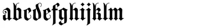 Wittingau Medium Font LOWERCASE