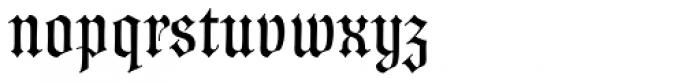 Wittingau Font LOWERCASE