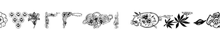 wmflowers3 Font LOWERCASE