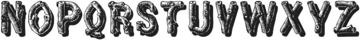 WoodFontFour ttf (400) Font UPPERCASE