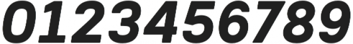 Woodford Bourne PRO Bold Italic otf (700) Font OTHER CHARS
