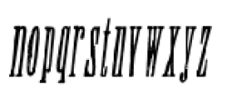 Wood Type Collection Condom Italic Font LOWERCASE