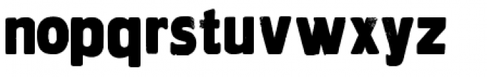 Wood Type Collection HWDP Font LOWERCASE