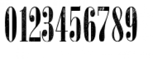 Wood Type Collection Hype Font OTHER CHARS