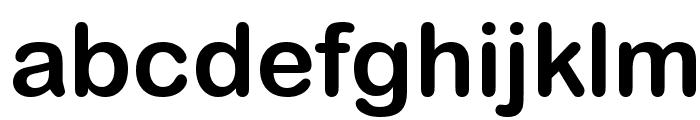 Wolf Sans Regular Font LOWERCASE