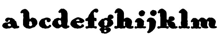 Wolfram Font LOWERCASE