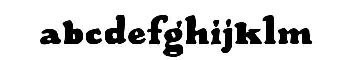 Wood Stevens Bold Font LOWERCASE