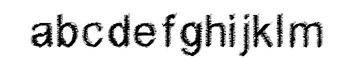 Woodbrush Font LOWERCASE