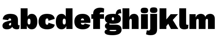 Work Sans Black Font LOWERCASE