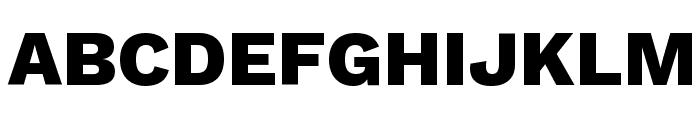 Work Sans ExtraBold Font UPPERCASE