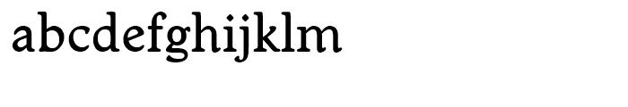 Worcester Round Medium Font LOWERCASE