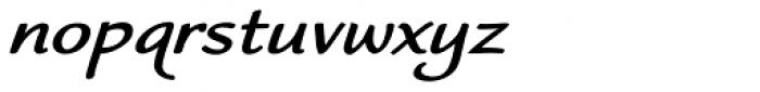 Worstveld Sting Bold Expand Oblique Font LOWERCASE