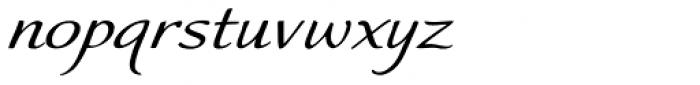 Worstveld Sting Expanded Italic Font LOWERCASE