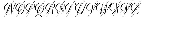 WTF Bellezza Regular Font UPPERCASE
