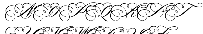 WTF Portfolio Regular Font UPPERCASE