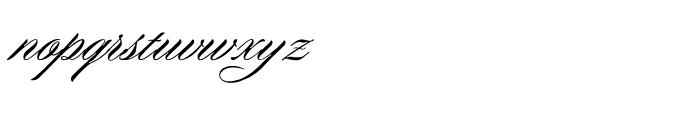 WTF Portfolio Regular Font LOWERCASE