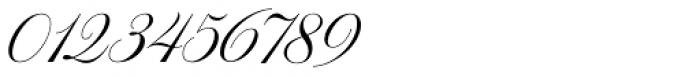 WT Hilton Script Fancy Font OTHER CHARS