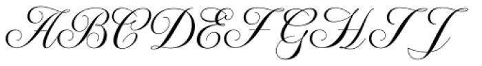 WT Hilton Script Fancy Font UPPERCASE