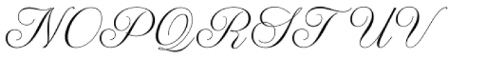 WT Hilton Script Normal Font UPPERCASE