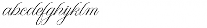 WT Hilton Script Normal Font LOWERCASE