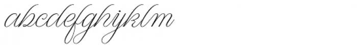 WT Hilton Script Thin Font LOWERCASE