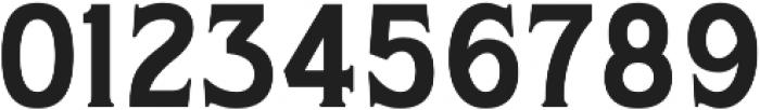 WUB - Northville 01 Medium otf (500) Font OTHER CHARS
