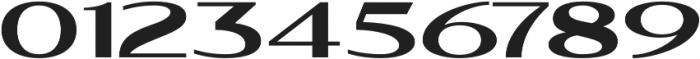 WUB - Northville 04 Heavy otf (800) Font OTHER CHARS