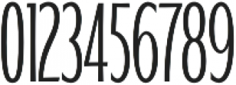 WUB - Northville 10 UltraLight otf (300) Font OTHER CHARS