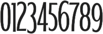 WUB - Northville 17 Light otf (300) Font OTHER CHARS