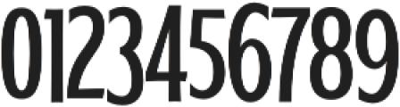 WUB - Northville 17 otf (400) Font OTHER CHARS