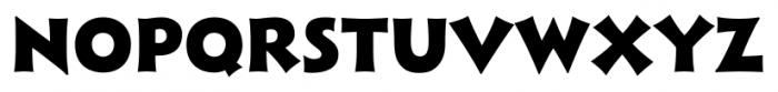 Xavier Sans Black Font UPPERCASE