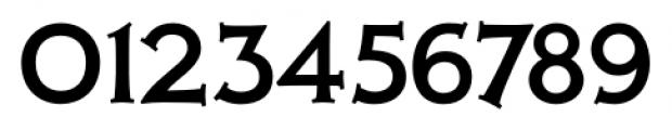 Xavier Serif Medium Font OTHER CHARS
