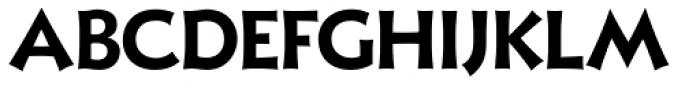 Xavier Sans Bold Font UPPERCASE