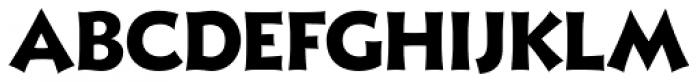 Xavier Sans ExtraBold Font LOWERCASE