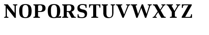 Xenois Serif Bold Font UPPERCASE