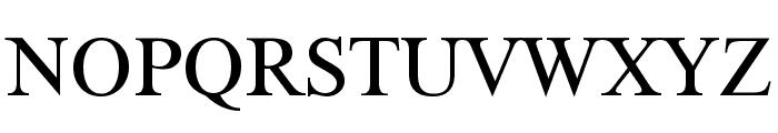 XSerif Unicode Font UPPERCASE