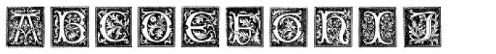 XVI Century Shaw Woodcuts Font LOWERCASE