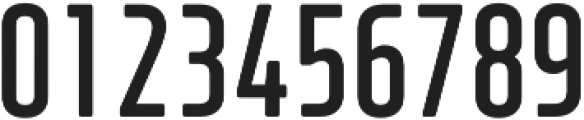 XXII Neue Norm RndCnd Bold otf (700) Font OTHER CHARS