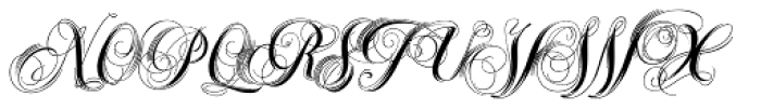Xylo Script Font UPPERCASE