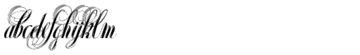 Xylo Script Font LOWERCASE