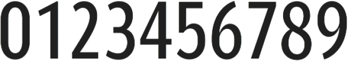 YE Paradigma RegularCondensed otf (400) Font OTHER CHARS