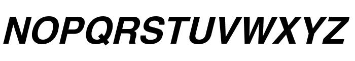 Yoxall Bold Italic Font UPPERCASE