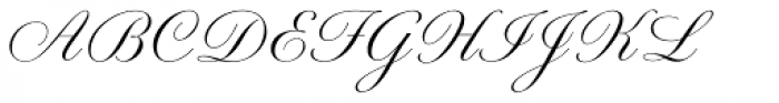 Young Gallant Font UPPERCASE