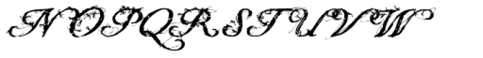 Youngblood Antique Grunge Font UPPERCASE