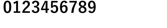 Yu Gothic Pr6 B Font OTHER CHARS