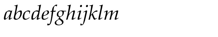Zapf Calligraphic 801 Italic Font LOWERCASE