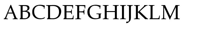 Zapf Calligraphic 801 Roman Font UPPERCASE