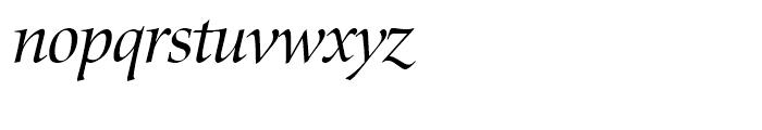 Zapf Renaissance Antiqua Book Italic Font LOWERCASE